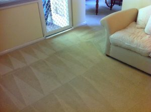 Carpet Cleaner Northern Beaches